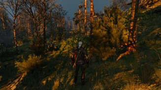 the-witcher-3-wild-hunt-cascadeshadowdistancescale1-config-file-tweak-001-1