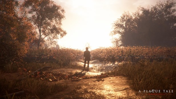 A Plague Tale: Innocence hat nun eine Demo auf Steam.