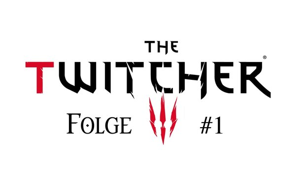 The Witcher 3: Alle Antworten #1 - Bugs, Ultra-Grafikeinestellungen, Quests & mehr.