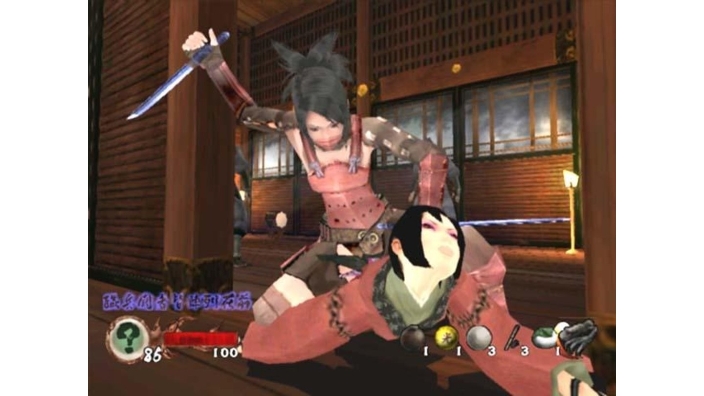 Ayame (dressed in her Ninja Armor) performing a stealth kill on an enemy Kunoichi in Gohda Castle.